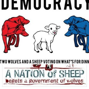 300x300-sheepwolves2